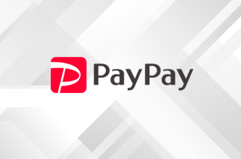 paypay-1-480x318