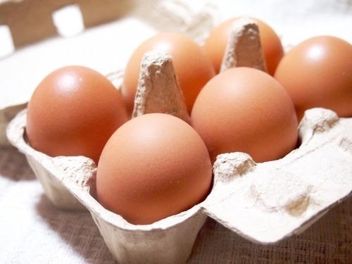 海外では生卵を食すことはないらしい