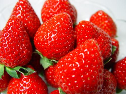 イチゴは野菜だと指摘されたんだがwwwwwwwww