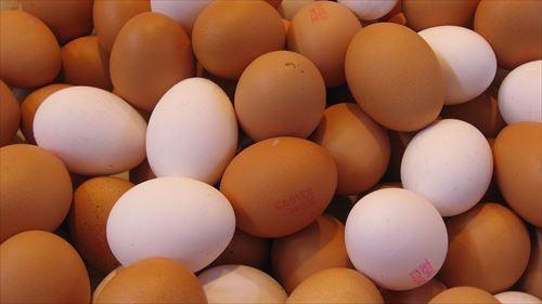 1日に2個以上卵を食べたらカラダに毒ってほんまなん?