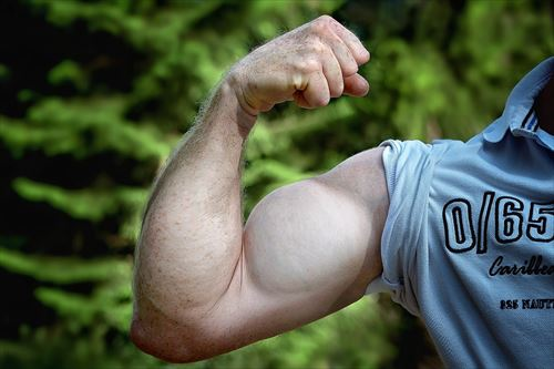 muscles-811479_1280_R