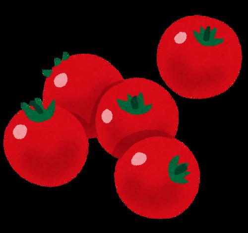 トマト嫌いなやつ、集まれ~!