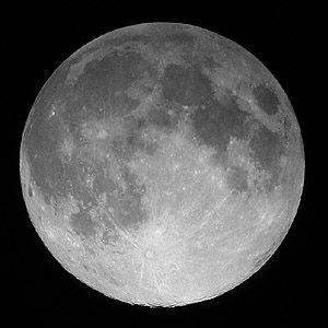 人類は月に永住できるか?月面で「バジル」「カブ」など育てる実験