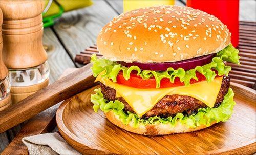 お嬢様「これが…ハンバーガー」ドキドキ ワイ「食べてみて」