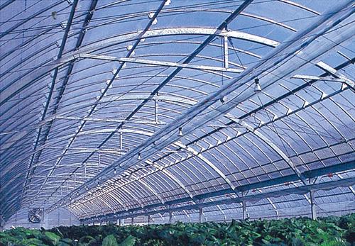 ビニールハウスで作物育てると天候に関係なく作れるの?