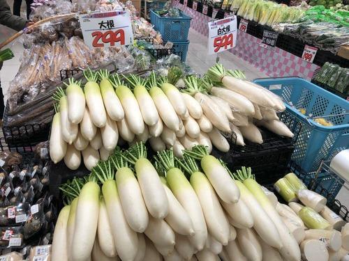 悲報 野菜が高い 大根600円 カリフラワー500円(画像あり)