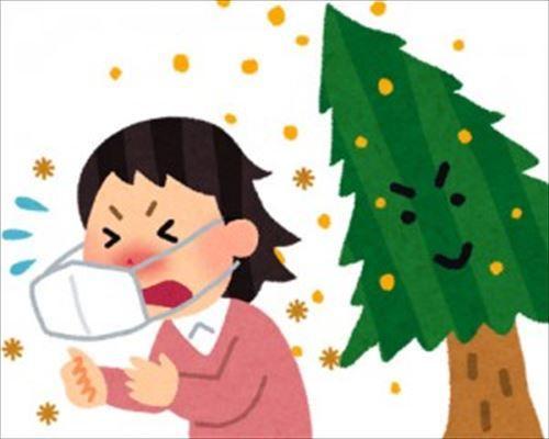 花粉症はヨーグルトを食べて腸内環境を整えると治る!←これ
