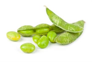 「枝豆(edamame)」がネットの海外検索で2位に、健康食として世界的注目