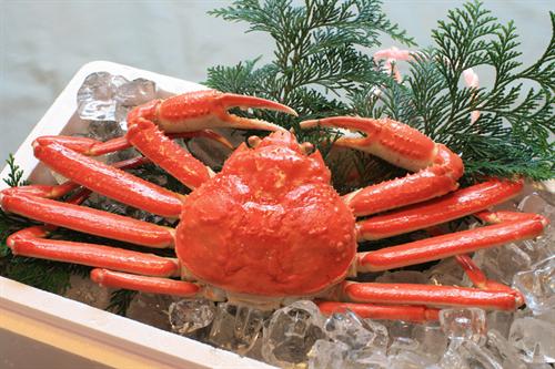 誘い文句は「めったにとれないサイズですよ」 北海道で低品質な海産物の売りつけトラブルが続出