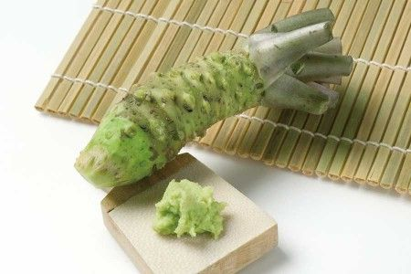 FRE-WASABI-ROOT1