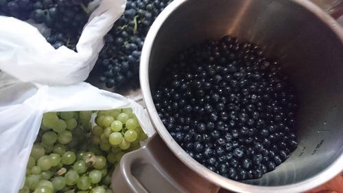 【緊急】ブドウを大量消費する方法