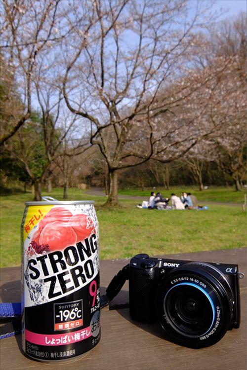 【悲報】ワイ、アルコール9%のチューハイ1缶で酔ってしまうことが判明