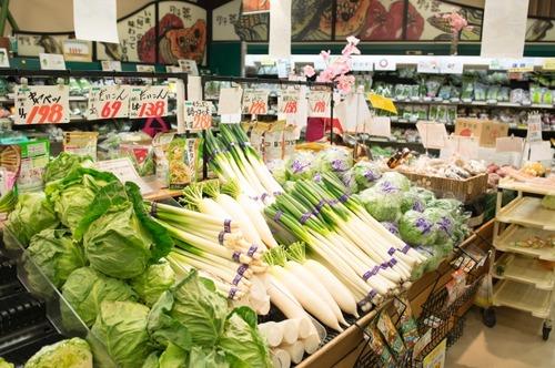 大卒でスーパーマーケットの店員やってるワイを侮辱してください