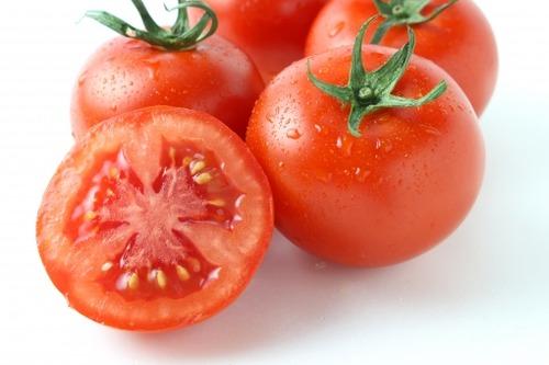 農家「トマトが赤くなったで」彡(^)(^)「そうですね」 若者自立塾「ニートは対話力不足だ」