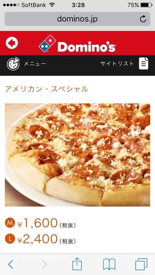 アメリカのピザの値段wwwwwwwwwwwwwwwwwwwwwwwwwwwww