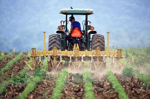 脱サラ農業ってそんなに難しいの?