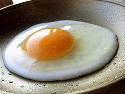 日本「生卵うめぇぇえ!」外国「焼けよ!!!!!」