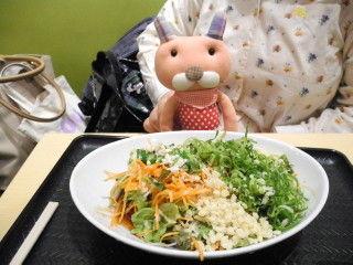 一日分の野菜のサラダうどん