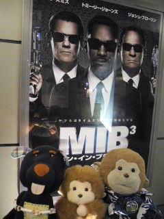 MIB3 02