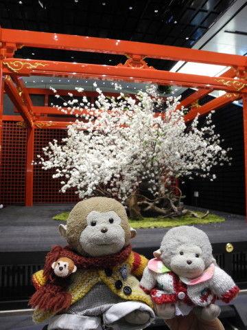 羽田桜祭り