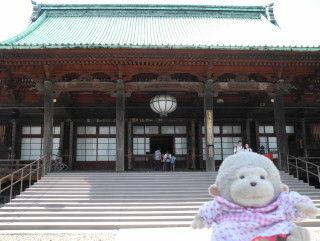 11護国寺本堂jpg