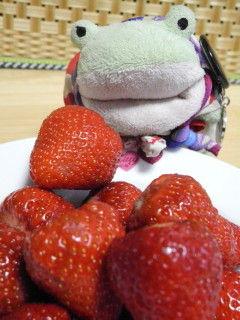 まごへえイチゴ2jpg