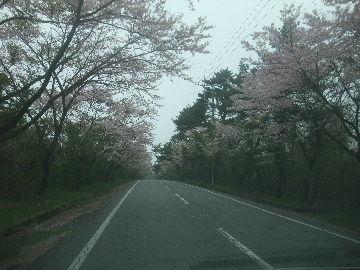 2012_0503富士山旅行20120026