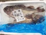 魚市場38