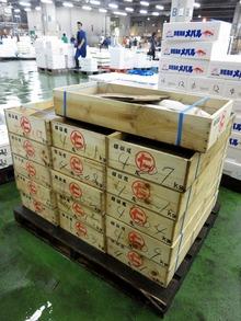 魚箱:横浜丸魚