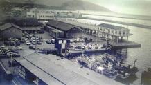 両津魚市場550年代