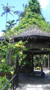 東洋植物楽園
