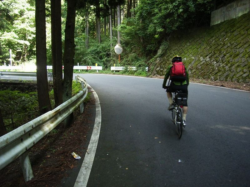 cycling and flowers 2 : ヤビツ峠と ...