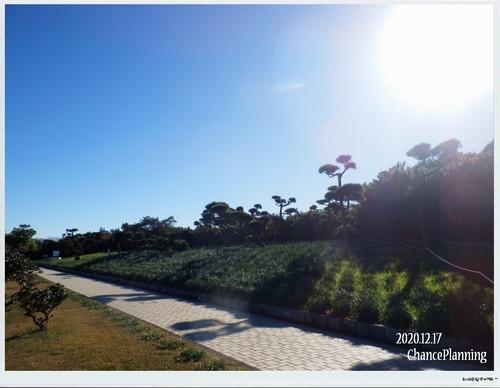 2020.12.17-城ヶ島公園b