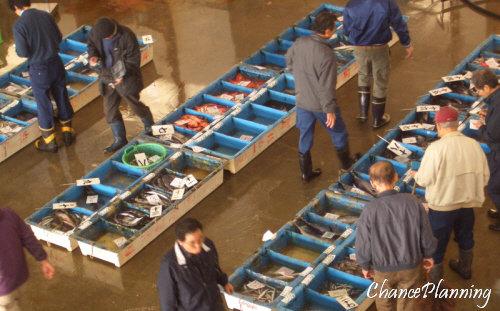 魚市場地魚