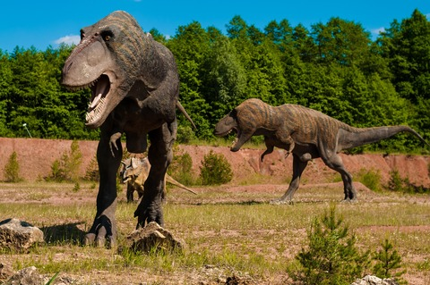 dinosaur-958017_1920