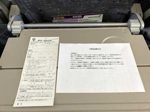 機内で配られた入国前の大切なお知らせ