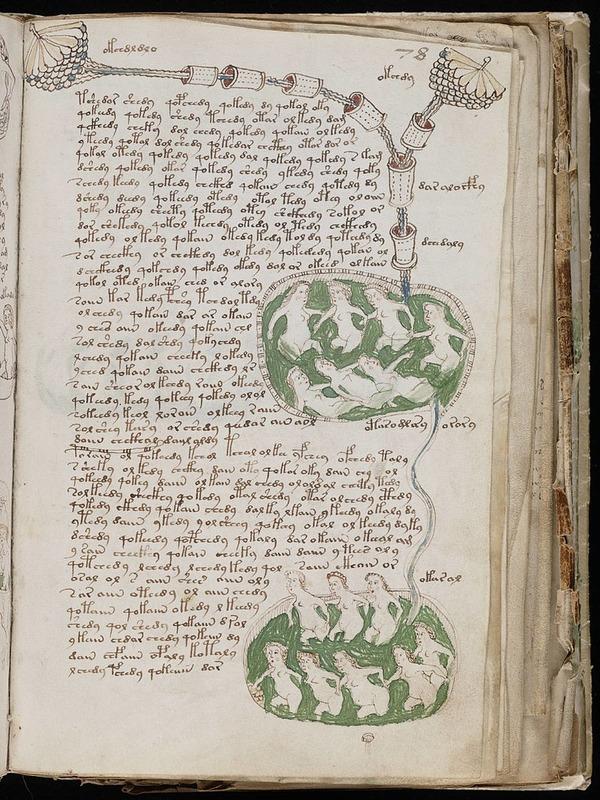 800px-Voynich_Manuscript_(141)