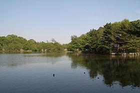 280px-Nerima_Syakujii_park_sampoji_pond