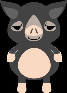 鹿児島黒豚(バークシャー種)