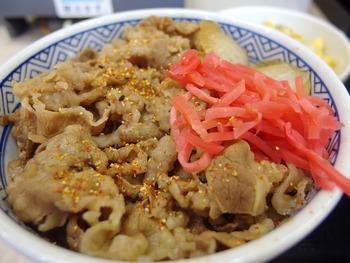 03 牛丼アップ