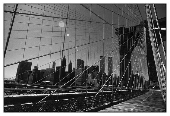 NYC41