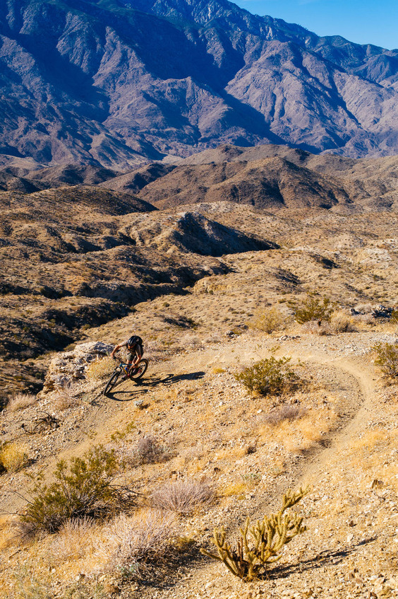 Mojave-Mobbin-on-the-Palm-Canyon-Epic-Trail-102