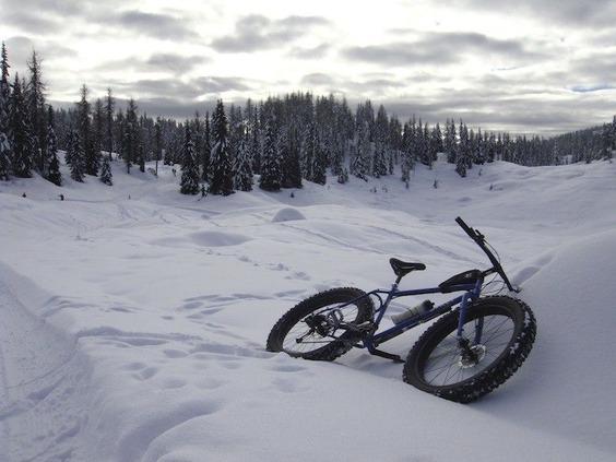 asiago-upland-fatbike