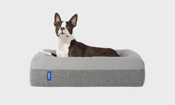 Casper-Dog-Bed