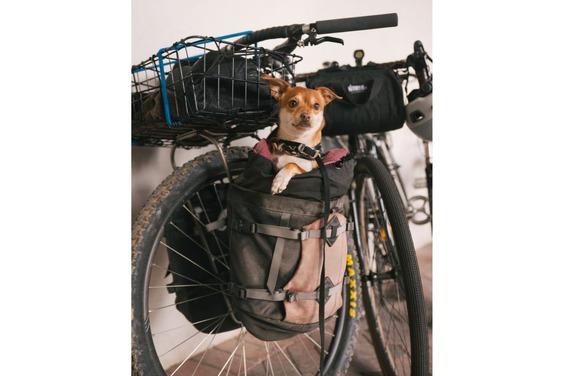 Transit-Cycles-29-1335x891
