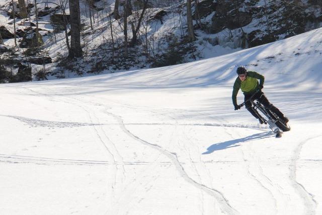 Fat Bike Ski carve %28Large%29