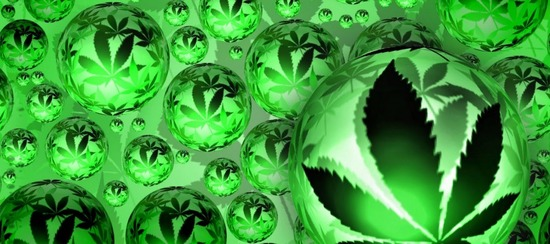 marihuana-890x395_c