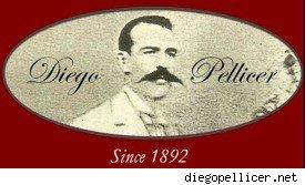diego-pellicer-logo1