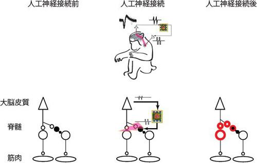press-nishimura20131108-2