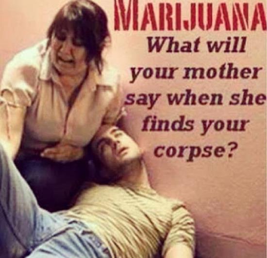 marijuana_disinformation_finest_06_580px